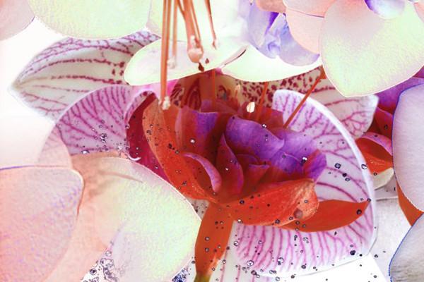 02-cristian-grossi-flower-fashion-glamour