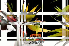 the madras adventure. Digital art project