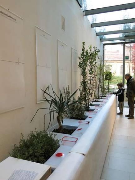 spazio-gerra-exhibition-2